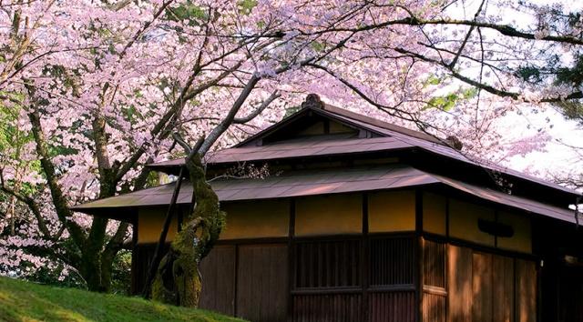 hiroshima-img04.jpg
